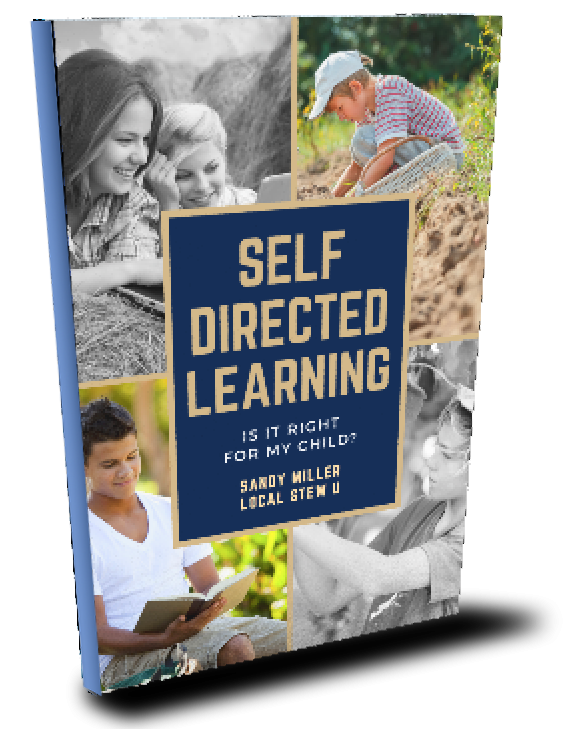 self directed learning ebook